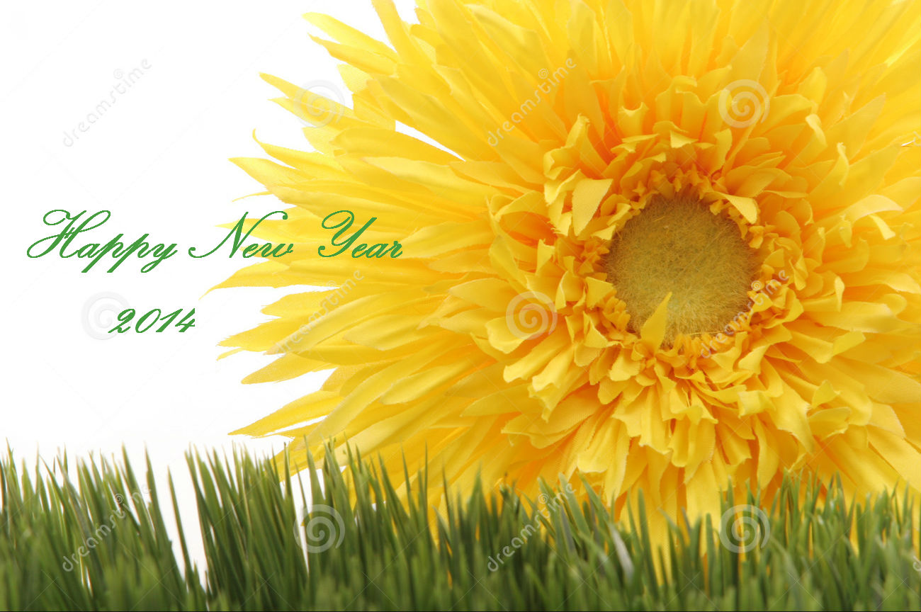 HAPPY NEW YEAR – 2014