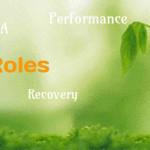 SQL Server DBA Responsibilities and Roles