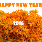 Happy New Year 2016 Wishes and Images