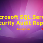 SQL Server Security Audit Report