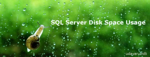 SQL Server Space Usage