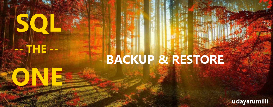 Top 10 SQL Server Backup and Restore Interview Questions