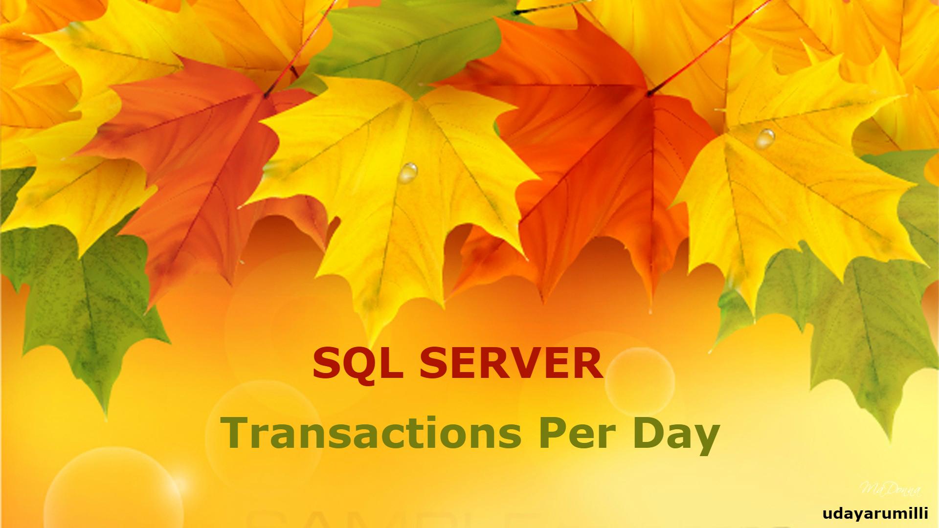 SQL Server Transactions Per Day