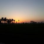 My Village – 6